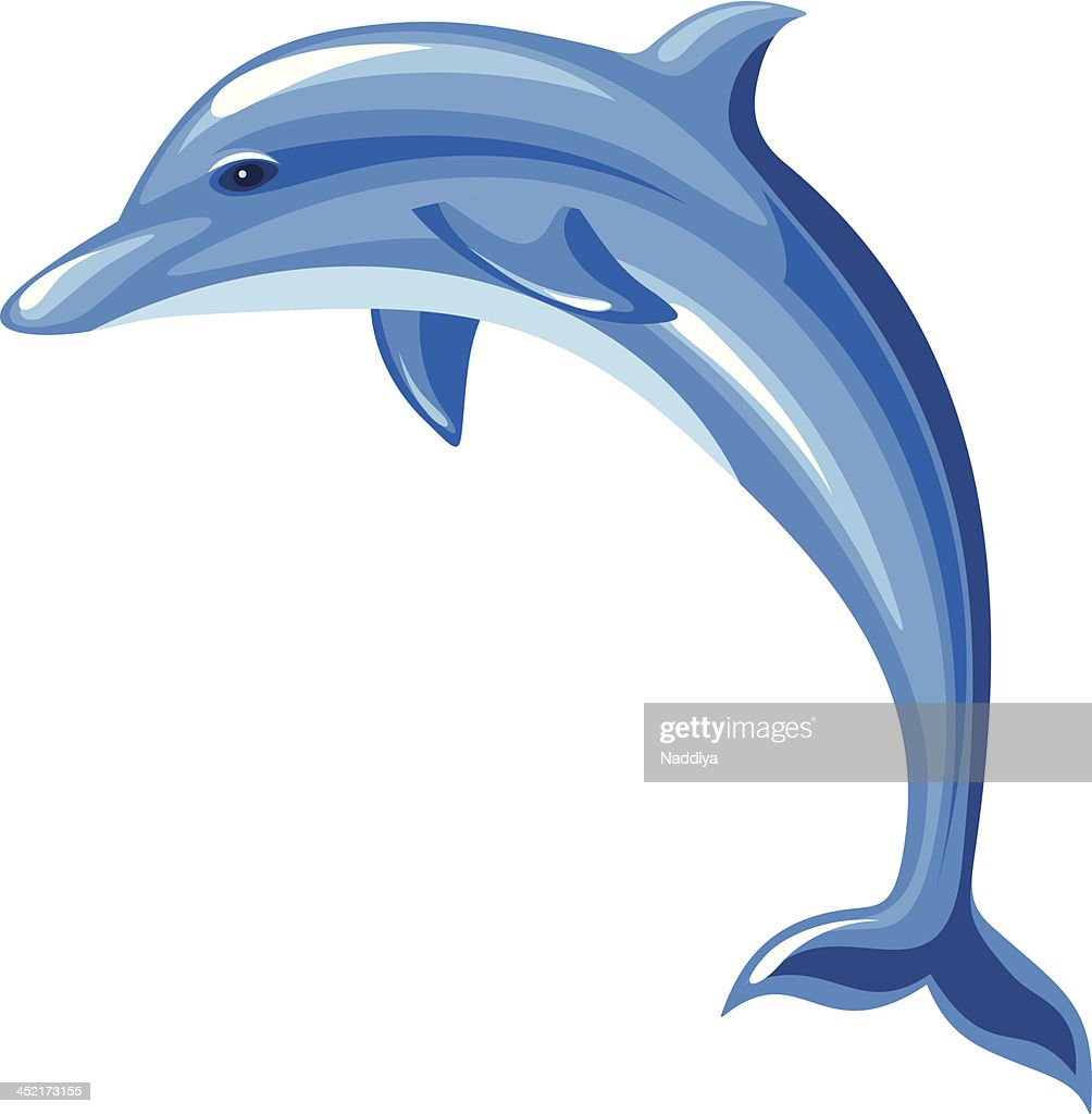 Dolphin. Vector illustration.