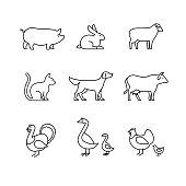 Domestic and farm animals thin line art icons set