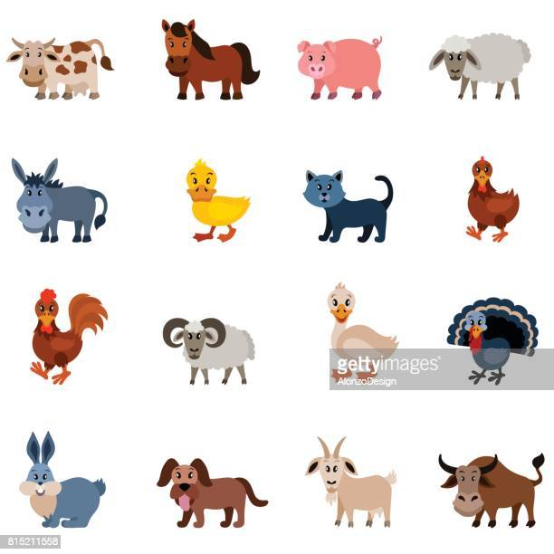 domestic animal characters - livestock stock illustrations