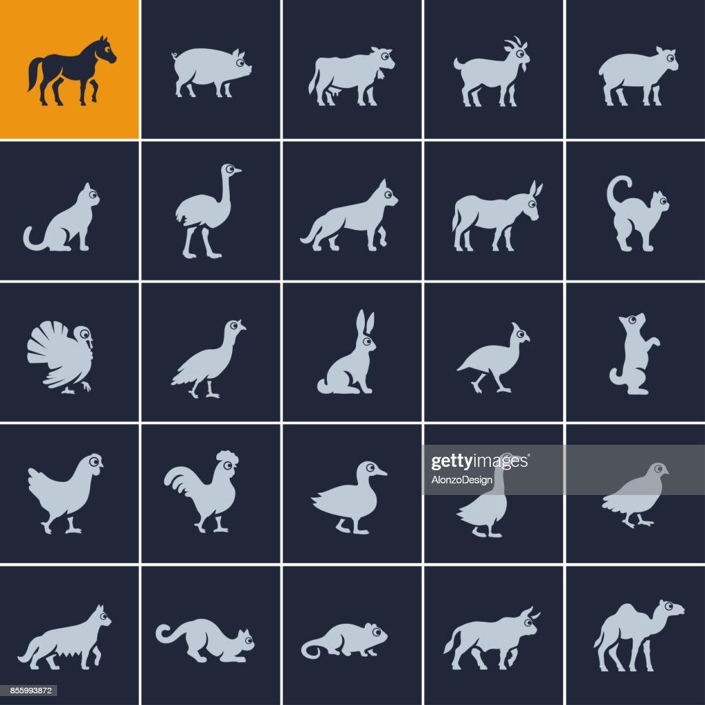 Domestic Animal Icon Set