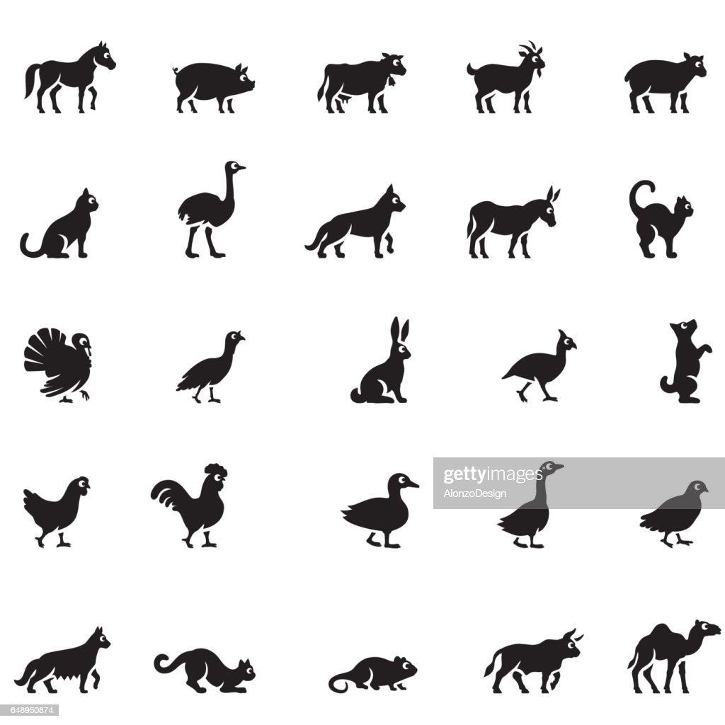 Domestic Animals Icon Set : stock illustration