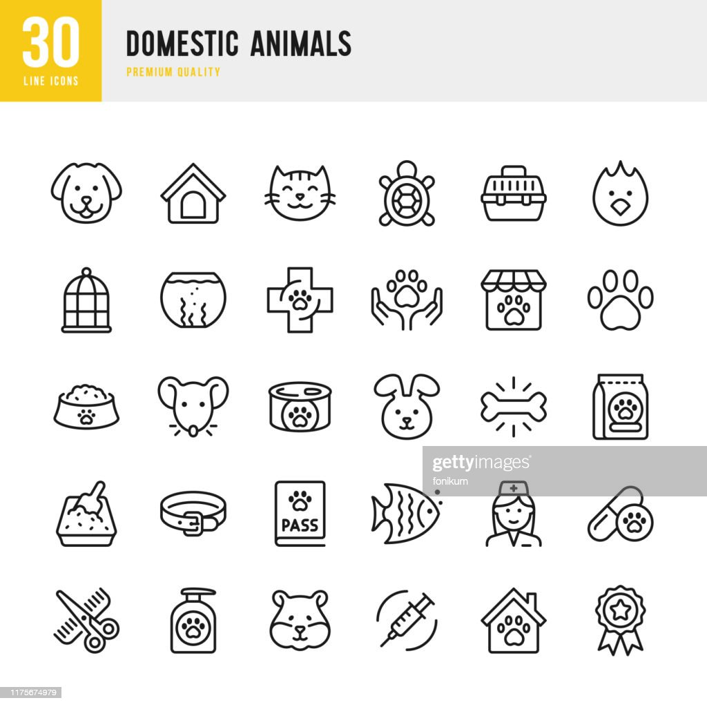Domestic Animals - thin line vector icon set. Pixel Perfect. Set contains such icons as Pets, Dog, Cat, Bird, Fish, Hamster, Mouse, Rabbit, Pet Food, Grooming. : stock illustration
