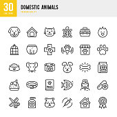 Domestic Animals - thin line vector icon set. Pixel Perfect. Set contains such icons as Pets, Dog, Cat, Bird, Fish, Hamster, Mouse, Rabbit, Pet Food, Grooming.