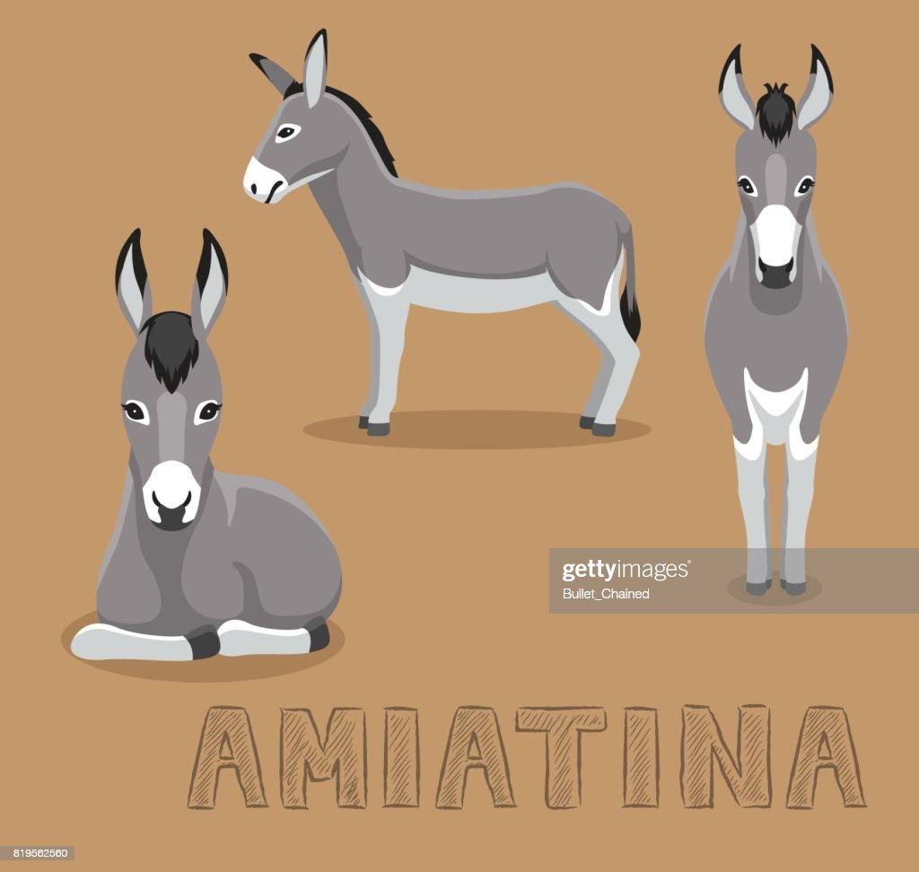 Donkey Amiatina Cartoon Vector Illustration