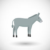Donkey flat vector icon, Flat design farm animal