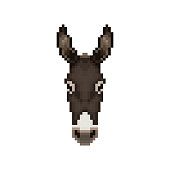 Donkey head in pixel art style. Vector illustration.
