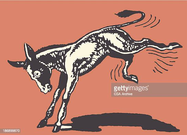 donkey kicking - donkey stock illustrations