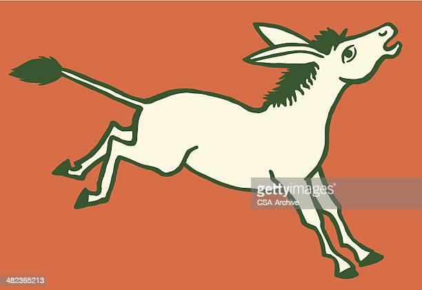 donkey kicking - donkey stock illustrations, clip art, cartoons, & icons