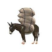 Donkey laden with sacks