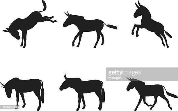 ilustraciones, imágenes clip art, dibujos animados e iconos de stock de burro silueta de - donkey