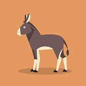 Donkey. Vector Illustration