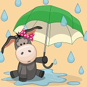 Donkey with umbrella