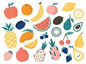 Doodle fruits. Natural tropical fruit, doodles citrus orange and vitamin lemon. Vegan kitchen apple hand drawn vector illustration