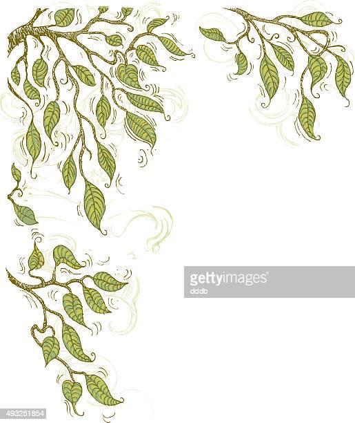 Doodle summer tree branches corner element