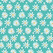 doodle white daisy flowers pattern on pastel green background, seamless background