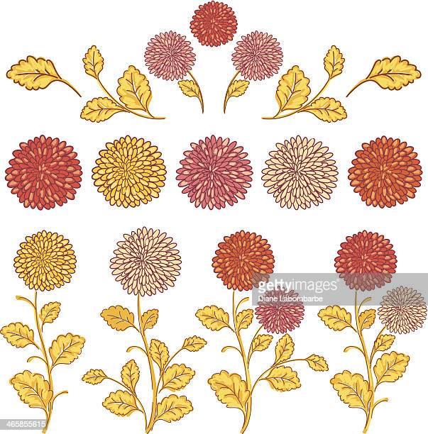 doodled 菊 - キク科点のイラスト素材/クリップアート素材/マンガ素材/アイコン素材