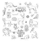 Doodles woodland set of animals and insects.