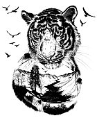 Double exposure, Hand drawn Tiger