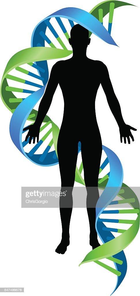 Double Helix DNA Chromosome Strand Human Figure