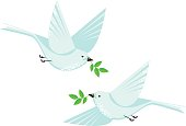 Dove bird couple and branchs vector flat style illustration