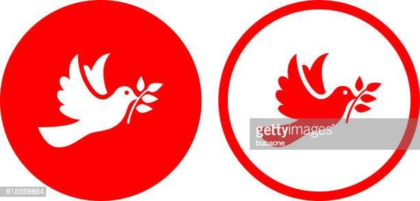 illustrations, cliparts, dessins animés et icônes de colombe oiseau symbole de paix. - colombe