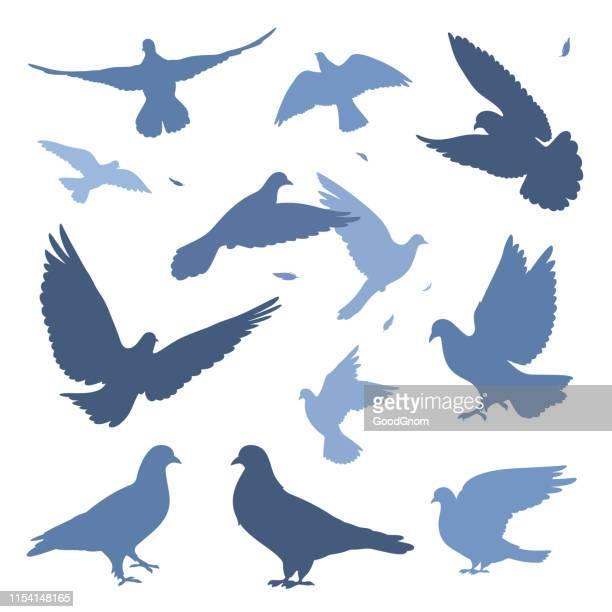 鳩の群れ - 小さめのハト点のイラスト素材/クリップアート素材/マンガ素材/アイコン素材