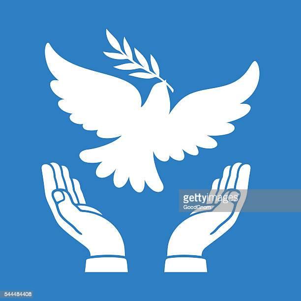 ilustraciones, imágenes clip art, dibujos animados e iconos de stock de dove de la paz - paloma blanca