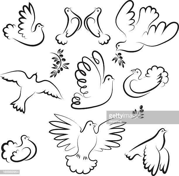 ilustraciones, imágenes clip art, dibujos animados e iconos de stock de dove - paloma blanca