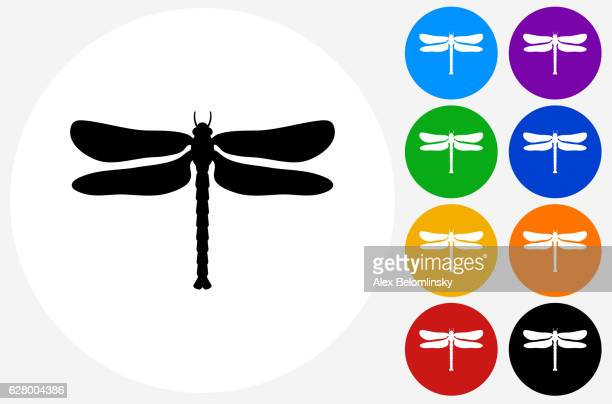 Dragon Fly Icon on Flat Color Circle Buttons