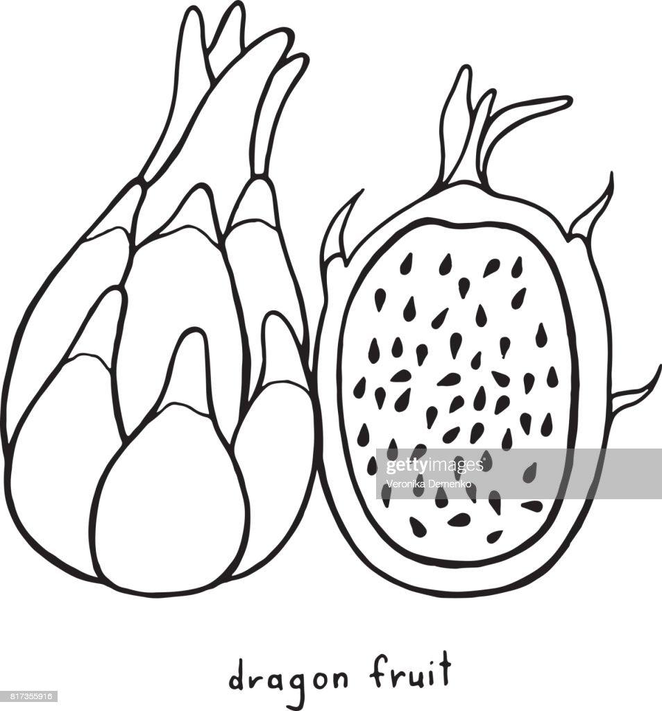 Drachen Malvorlagen Obst Grafische Schwarzweiß Vektorgrafiken Für