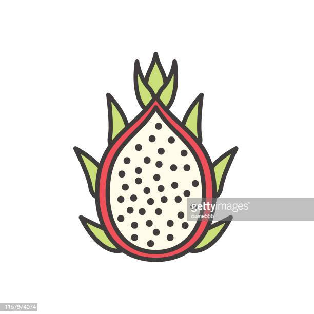 dragon fruit cute fruit icon - dragon fruit stock illustrations