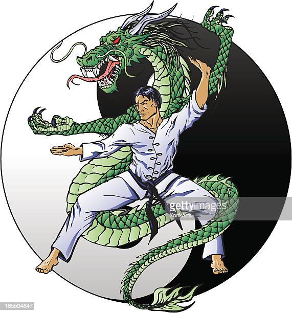 dragon kung fu - combat sport stock illustrations