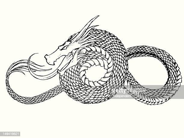 dragon tattoo - animal scale stock illustrations, clip art, cartoons, & icons