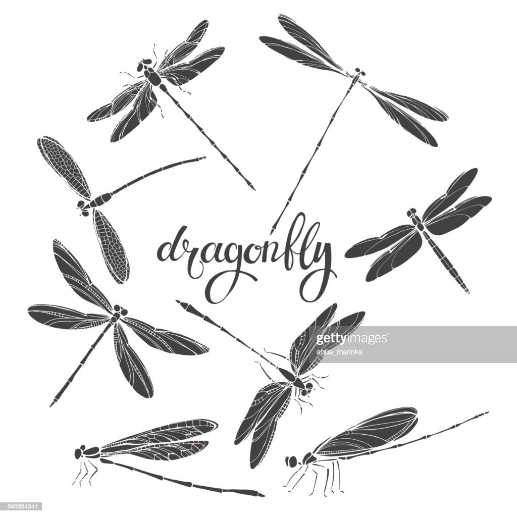 Dragonfly. Silhouettes. Vector  illustration on white background. Isolated elements for design, eight insects.