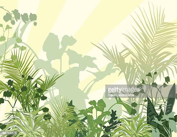 illustrations, cliparts, dessins animés et icônes de drak et des plantes tropicales verdoyantes fond jaune traces - plante verte