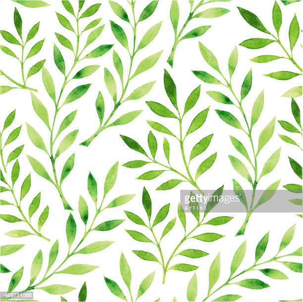 a drawing of a pattern of green leaves on a white background - green color stock illustrations
