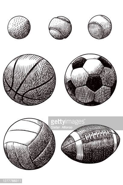 drawing of various sport balls - tennis ball stock illustrations