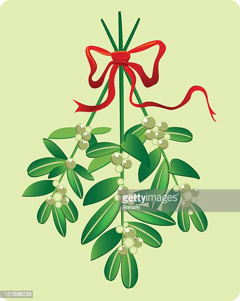 a drawing on mistletoe hanging from a red bow - mistletoe stock illustrations, clip art, cartoons, & icons
