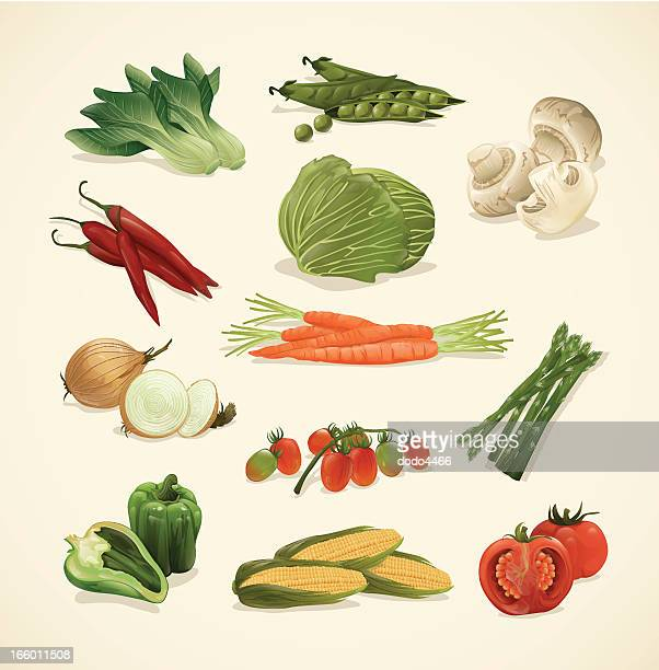 Drawing set of assorted healthy vegetable icons