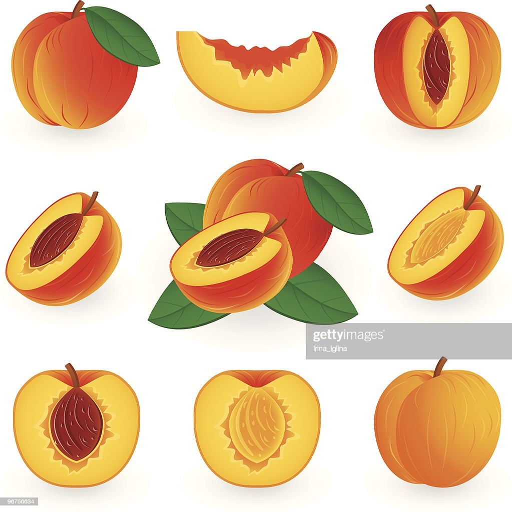 Drawings of peaches some whole and some cut