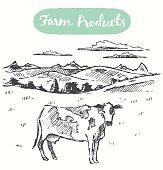Drawn cow meadow farm fresh products vector