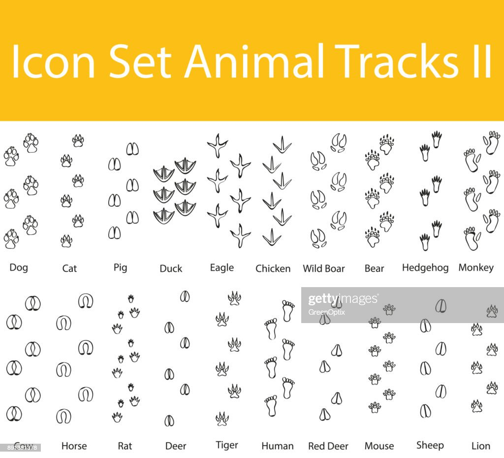 Drawn Doodle Lined Icon Set Animal Tracks II
