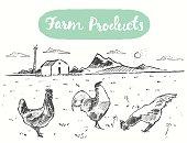 Drawn range chicken farm fresh meat vector sketch