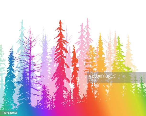 dry forest range rainbow - tall high stock illustrations