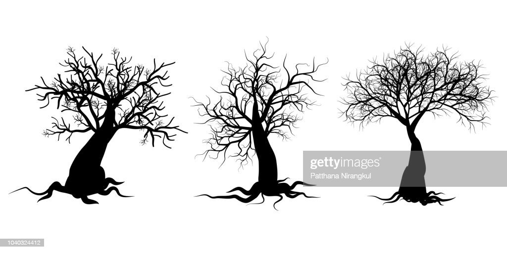 Dry twig tree silhouette set collection on white background vector illustration.