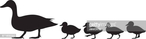 bildbanksillustrationer, clip art samt tecknat material och ikoner med anka och ankungar siluett - duck