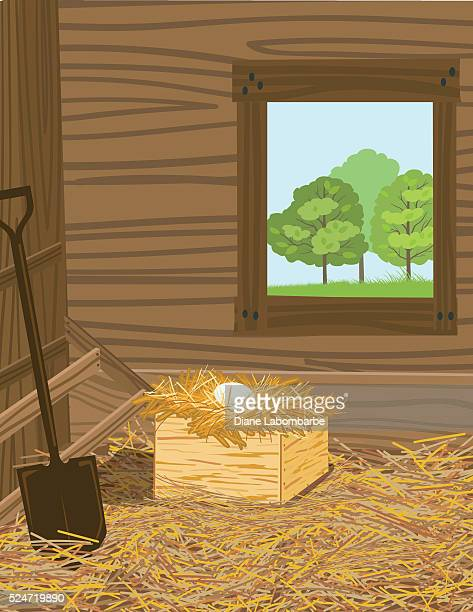 duck egg sitting in a nest box - enclosure stock illustrations
