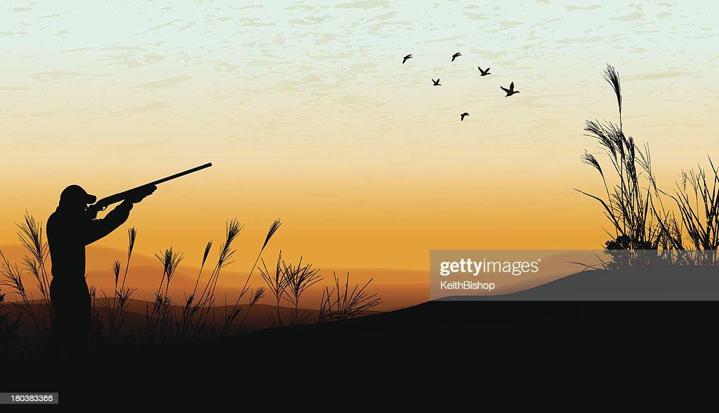 Duck Hunting Background - Hunter : stock illustration