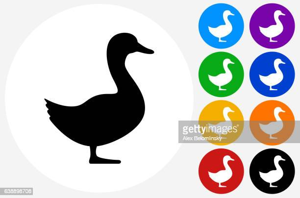duck icon on flat color circle buttons - duck stock illustrations, clip art, cartoons, & icons