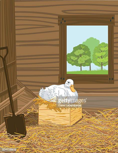 """Ente sitzen auf Ihre Ei In ein Nest """""""